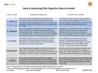 Fan Foundry Sales & Marketing Capability Maturity Model